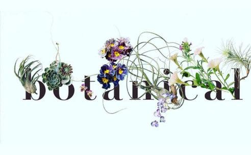 11月3日(金・祝)「botanical market」開催
